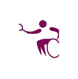 Wheelchair tennis logo 250-252